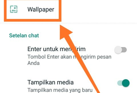 Cara mengganti background WhatsApp 3