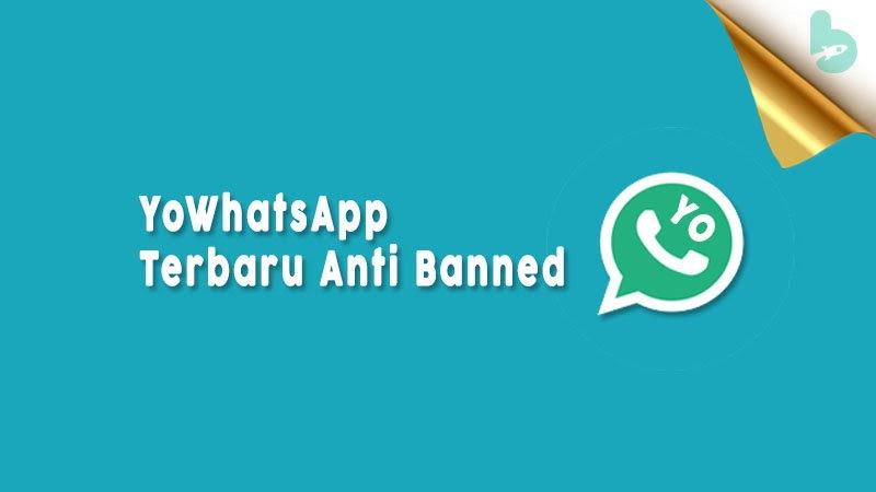 tips anti banned yowhatsapp